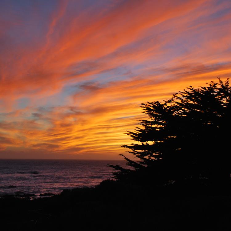 GO WEST Sunset